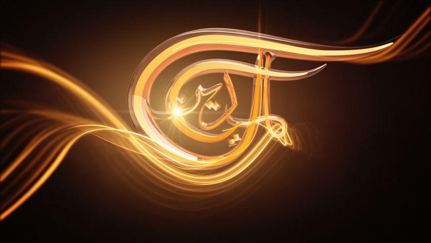 Al Mayadeen TV